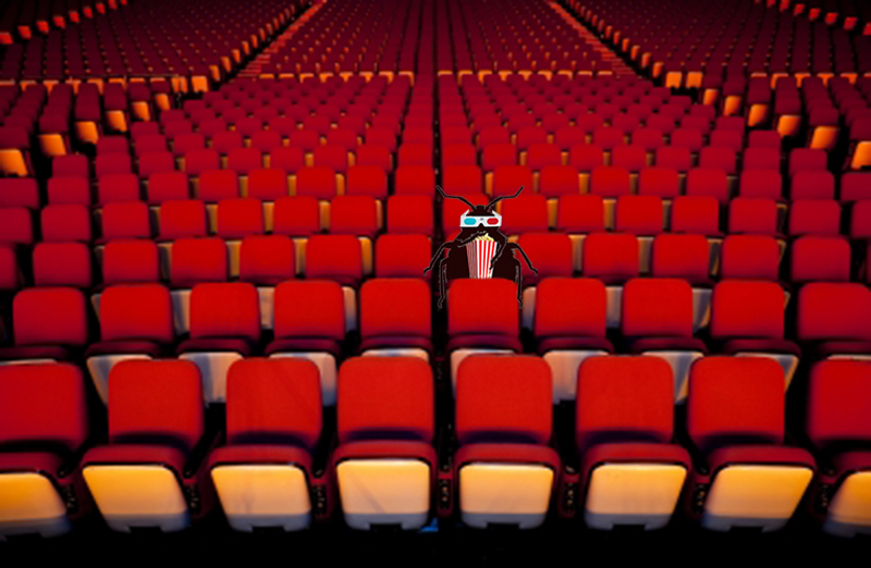 Bed Bugs In Movie Theaters
