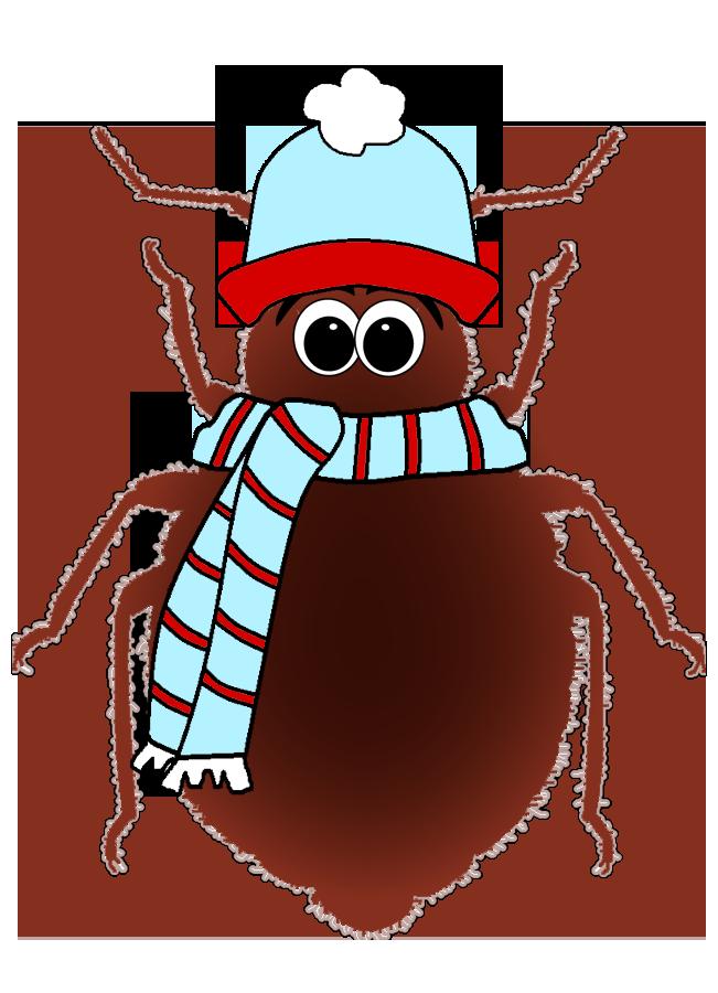 freezing-kill-bed-bugs